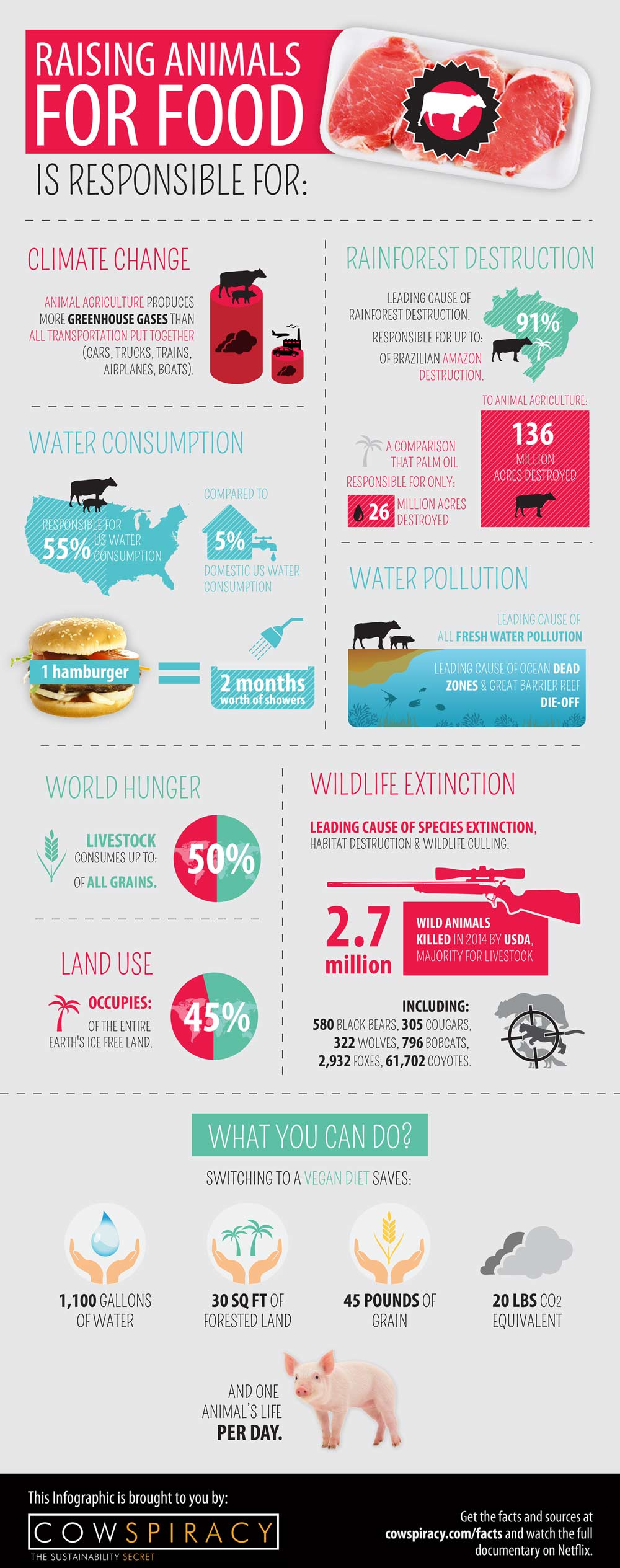 cowspriacy-infographic-2015